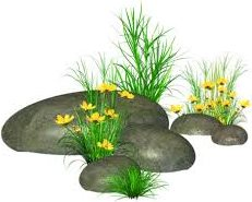 landscaping rock